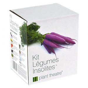 Kit Légumes Insolites par Plant Theatre – 5 légumes extraordinaires à cultiver soi-même – Idée cadeau