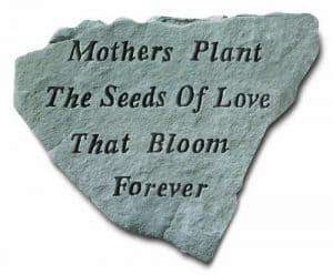 Kay Inc Berry-67420 plantes m-res des graines d'amour qui fleurissent Forever – Memorial – 14,5 cm x 12,75 cm