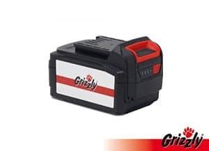Grizzly Batterie 24V, 3.0Ah, Batterie de Rechange, Accessoire Tondeuse sans Bracelet 2433–20