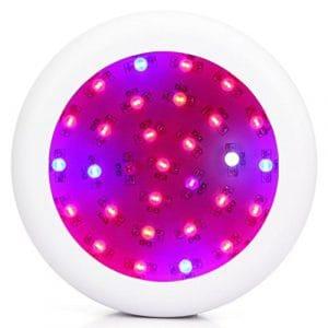 300W LED élèvent des lumières avec UV/IR plein spectre Chips double lampe de croissance pour les plantes d'intérieur aquatique hydroponique à effet de serre