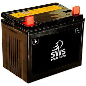 Batterie prête à l'emploi 12 V 16 Ah 280 pour toute tondeuse à gazon MTD – pour MTD et autres tondeuses autoportées