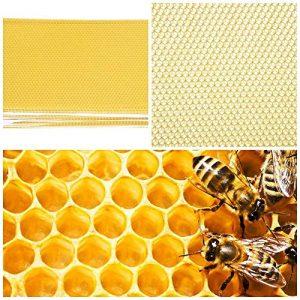 LECHI Honeycombღ Fond de Teint – 30 pièces pour Apiculture – Feuille de Teint – Outil de Cadre pour extracteur de Miel