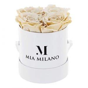 ® Boîte de roses avec 4 roses Infinity   Boîte à fleurs (boîte cadeau pour la Saint-Valentin) fleurs conservées 3 ans de durabilité (Blanc – Champagne)