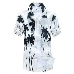 Sunnywill Chemise Homme Hawaïenne Manches Courtes Casual