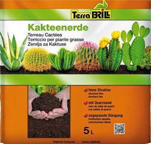 Terrabril Engrais de Sol pour Plantes succulentes – 5 litres – Engrais de Jardin
