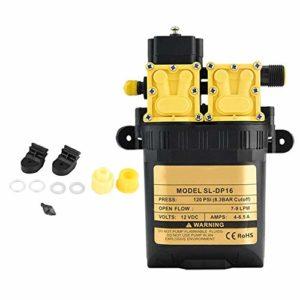 Duokon Pompe à Eau électrique agricole à Haute Pression de la Pompe à Eau à Haute Pression de 12 V CC