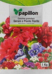 Papillon 8025015 Engrais pour géraniums 1kg