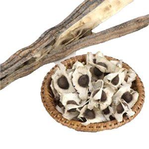 Lot de branches de moringa Tianfuheng avec 50 graines – Biologiques – Pour les quatre saisons 50Pcs Moringa Oleifera Seeds