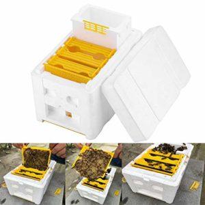 omufipw Abeille Ruche Apiculture Roi boîte boîte de pollinisation Apiculture Outil de Culture boîte de Plastique de Culture pour la pollinisation de Jardin